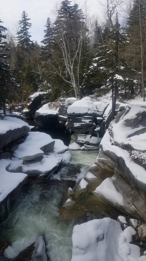 Mountain stream in November